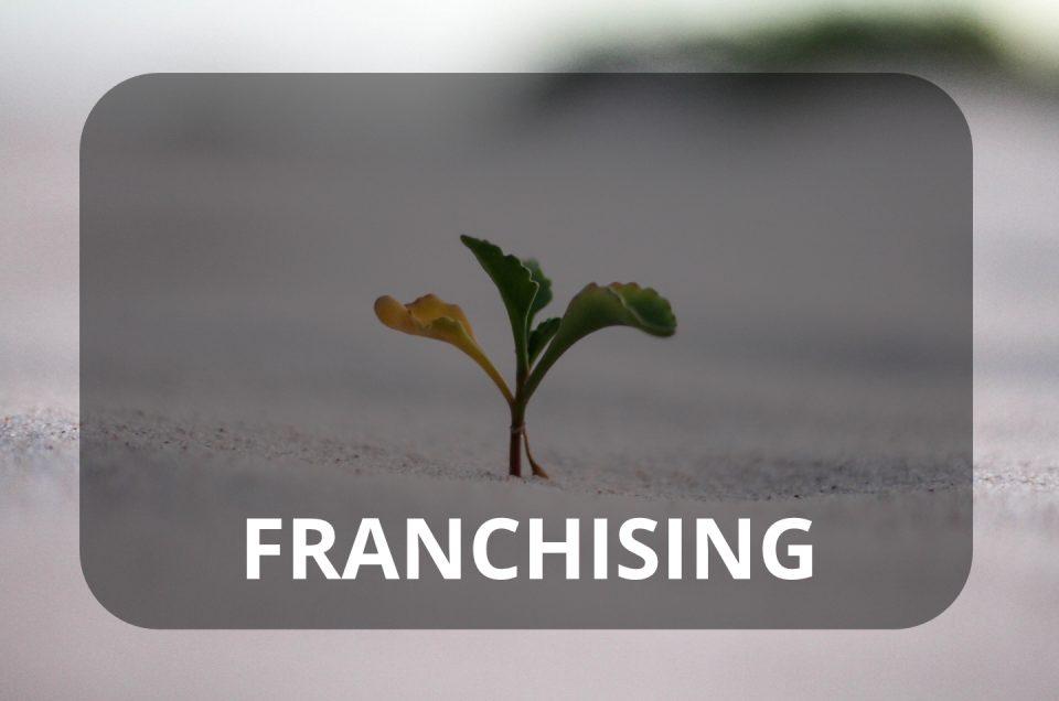 Franchising movim